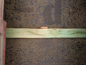 比較的新しい防水紙と瓦桟