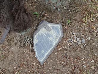 お庭に落ちていたスレート屋根材の欠片