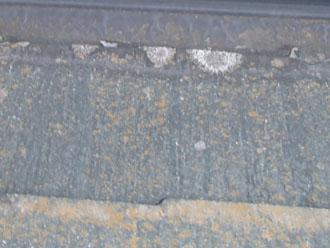 屋根表面の藻や苔とカビ