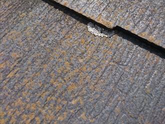 西東京市新町でヒビ割れが酷い化粧スレートをガルバリウム鋼板で屋根カバー工事します