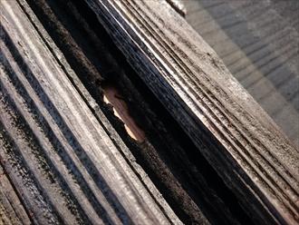 棟板金が剥がれて下地が剥き出しです