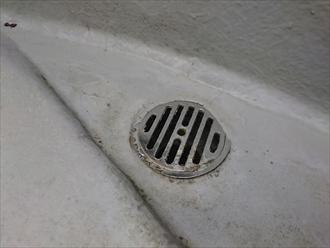 排水口の回りは意外としっかりしています