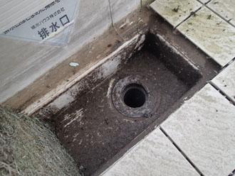 汚れた排水口