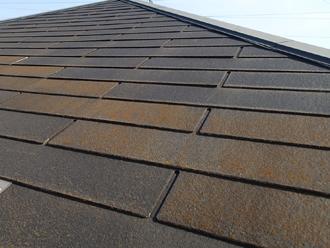 国立市西 屋根塗装前の屋根には苔が生えている