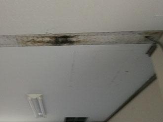 中央区室内天井の雨染みとカビ
