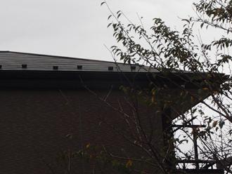 当然のことながら屋根の上は見えない