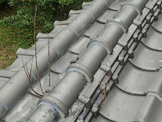 植物の生えた屋根の棟