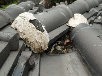 屋根の窪みにたまった枯葉