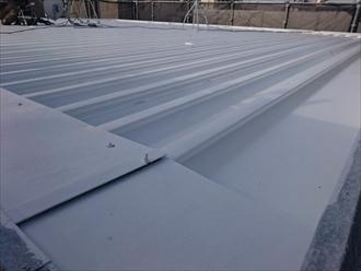 真っ白になった折板屋根