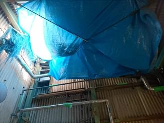 割れた屋根はブルーシートで養生してあります