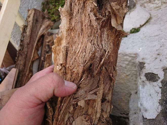 腐った隅木