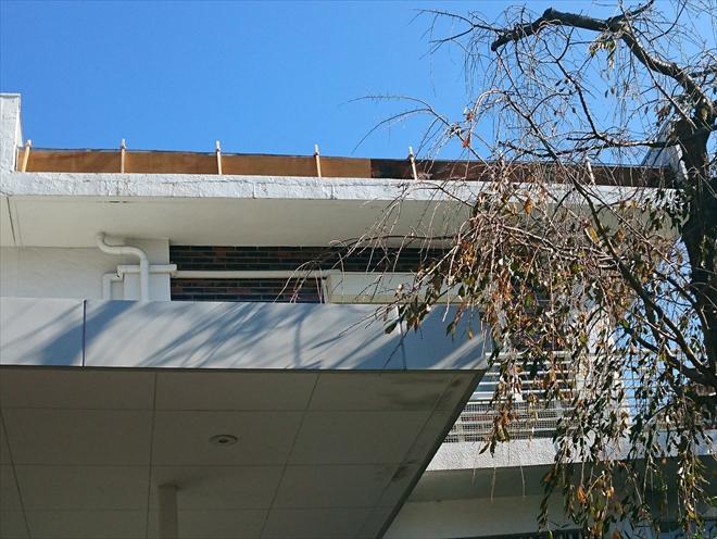 屋根の軒先は仮で養生していあります