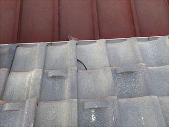 棟瓦の落下で割れた平瓦