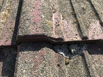 セメント瓦の剥離とコケ