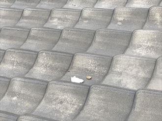 瓦屋根の途中に抜けてしまった漆喰の破片が落ちています