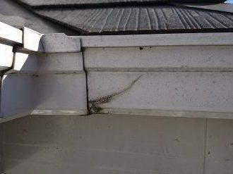 亀裂の入った雨樋