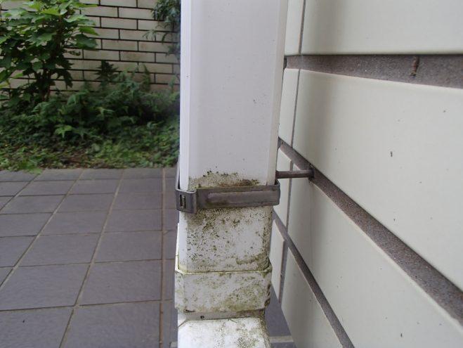苔の生えた雨樋