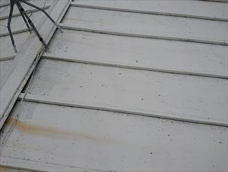 瓦棒葺き屋根は若干下地が傷み始めています