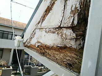 腐食した破風板の木部