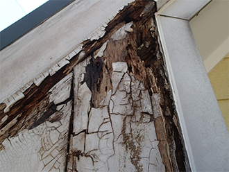 腐食が進み崩れた木部