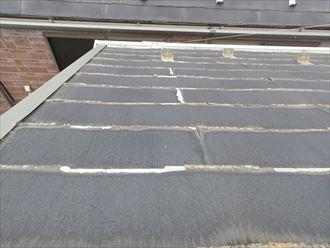 北側のパミール屋根