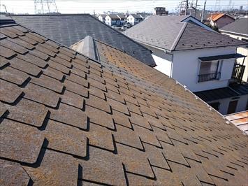 大分ボロボロになっているアーバニー葺き屋根