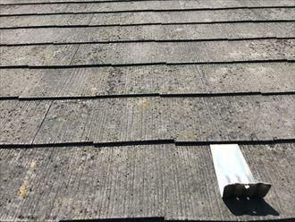 スレート屋根の表面の色褪せ