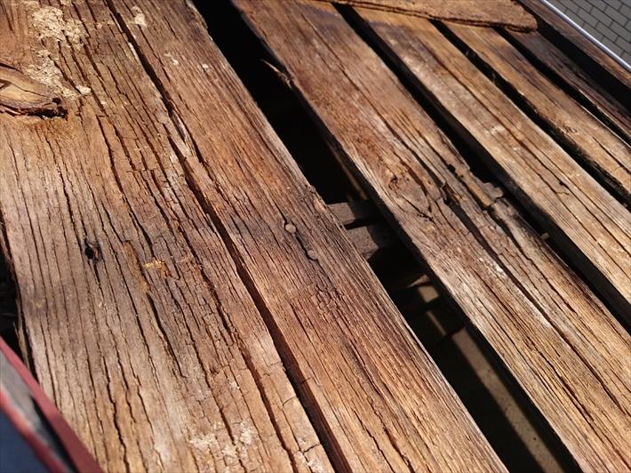 下地の杉板が腐っています