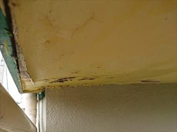 雨漏りで軒天が腐食しています