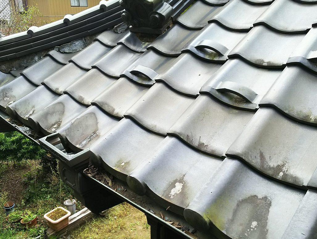 瓦の水捌けの悪い箇所に藻や苔が発生