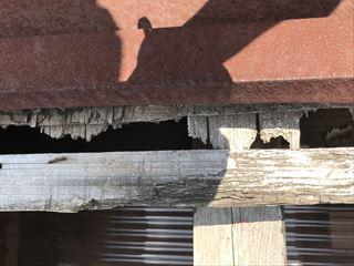 木の腐食で水の進入路が出来てます