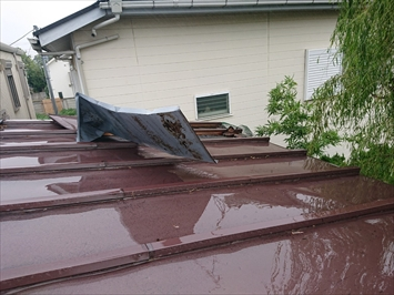 トタンの瓦棒屋根が捲れています