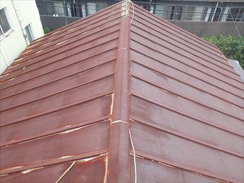 瓦棒屋根全体