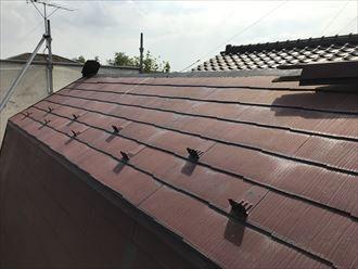江戸川区西篠崎で台風15号により棟板金が飛散、棟板金復旧工事を行いました