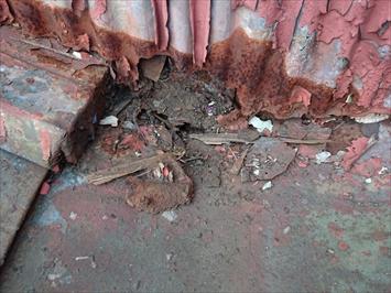 調布市国領町で台風19号の被害を受けた倉庫の屋根を火災保険で直します