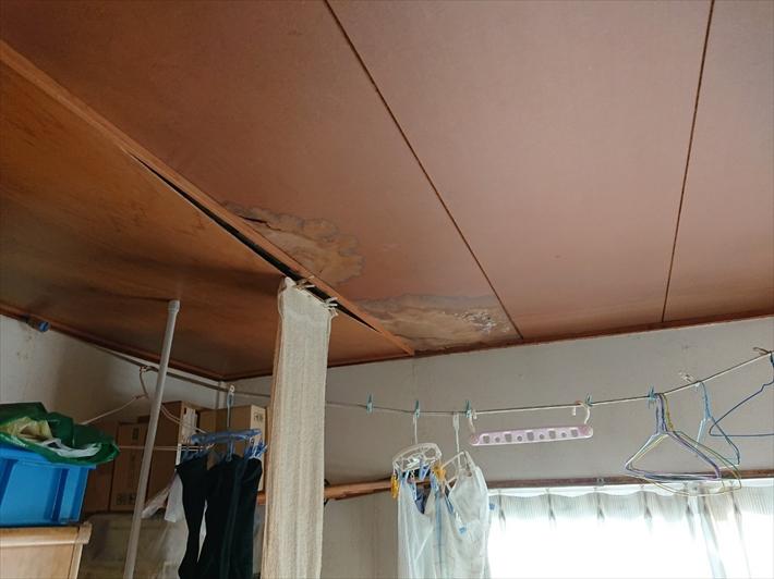 天井から雨漏りしています