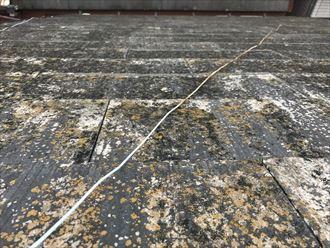 屋根の剥離やコケ
