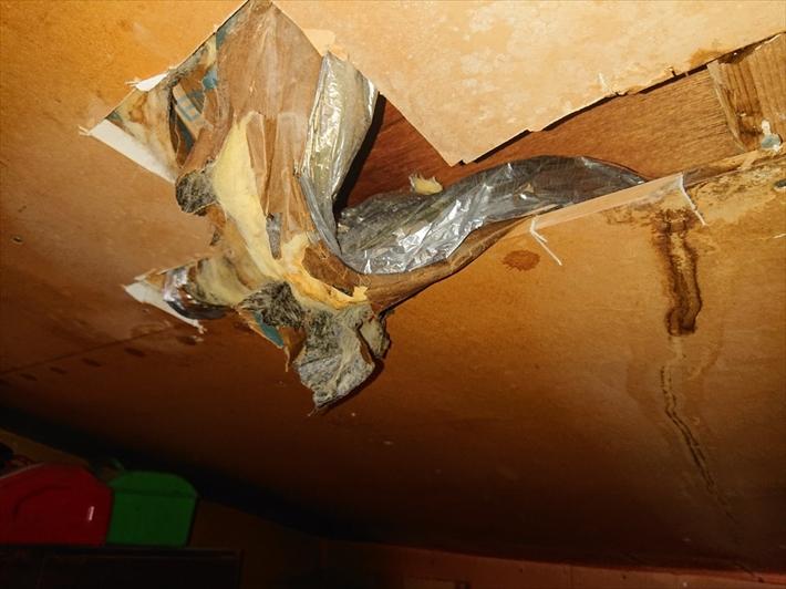 小屋裏収納の天井部分から雨漏りしています