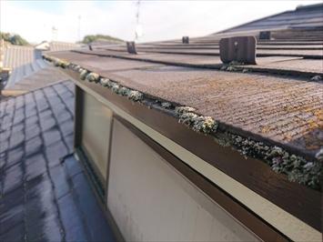 屋根の軒先に水が溜まりやすくなるとコケが生えます