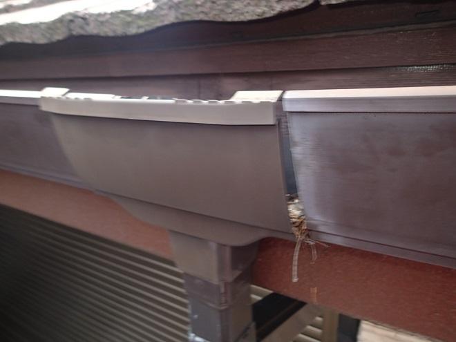 集水器が外れた雨樋
