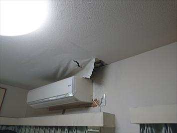雨漏りによって室内の壁と天井が劣化します