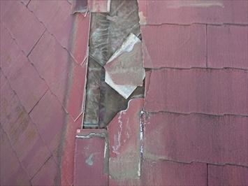 防水紙も被害を受けています