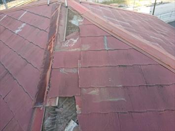 屋根の一面が被害を受けています