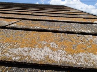 苔の繁殖したスレート屋根