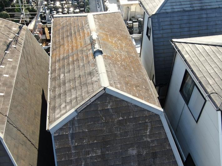 屋根全体の状態を確認
