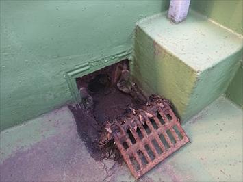 排水口まわりは雨漏りの原因になりやすい部分です
