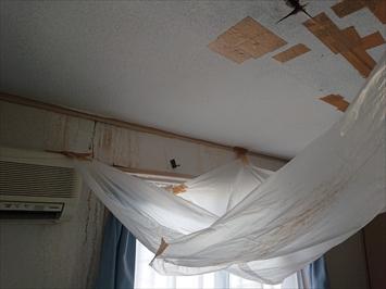 天井から大量の雨漏り