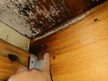 八王子市松木で散水試験で雨漏りの原因を調査します