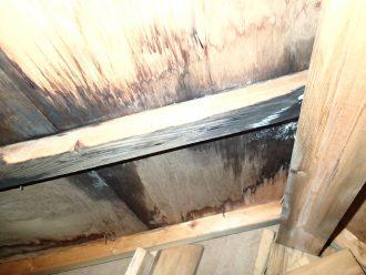 雨漏りで木材が腐食