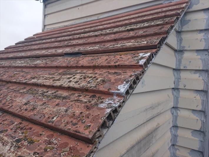 屋根にはサイディングが張ってあります
